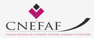 Cnefaf